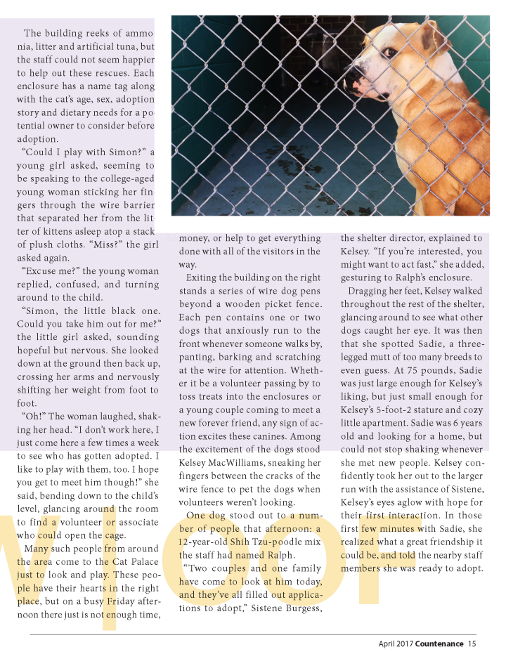 completed magazine layout_Page_15